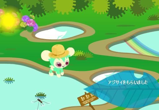 アメンボ公園アジサイ6・24.jpg