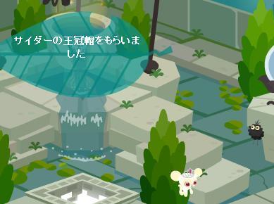 サイダーの王冠帽4.19.jpg